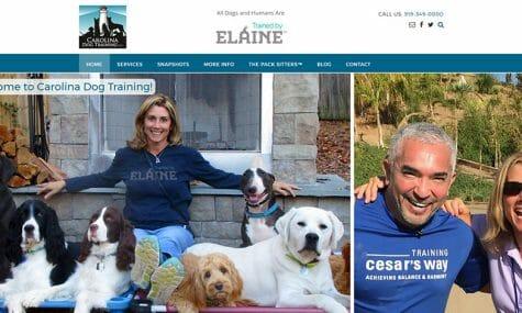 Carolina Dog Training / Trained by Elaine Website Developed by Talk19 Media Marketing