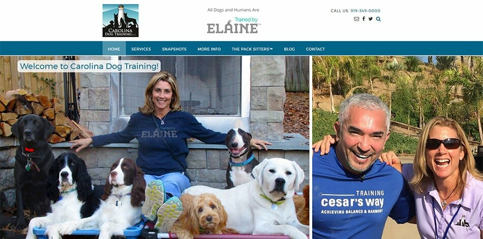 Carolina Dog Training / Trained by Elaine Website Developed by Talk19 Media Marketing